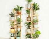 5 Tier Bamboo Stand For Plants, Bathroom, Bookcase, Shelf, Rack Corner Flower Holder Outdoor Garden, Plant ladder