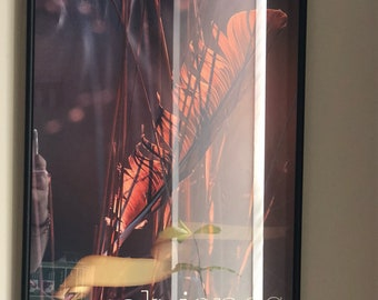 Framed Original Norah Jones SF Fillmore Poster
