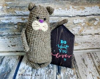 Knitted cat Amigurumi