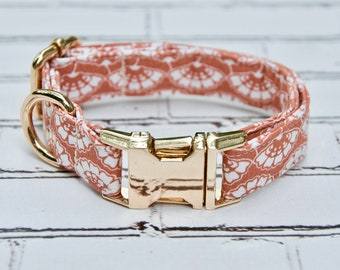 Golden Bay Dog Collar with Gold Hardware