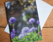 Purple Flower Card | Nature Photography