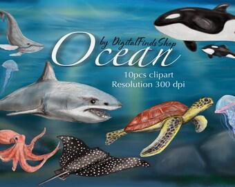 Ocean clipart, animals clipart, underwater clipart, fish clipart, turtle clipart, ocean sublimation, background ocean, safe ocean.