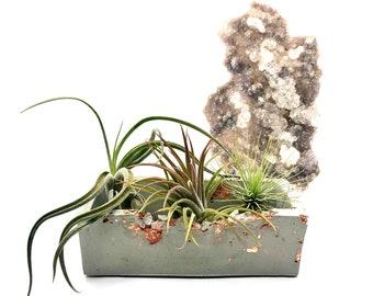 Concrete Air Plant Display • Raw Crystal • Planter • Plant Pot • Cement Holder • Quartz • Tillandsia • Airplant • Boho Gift  • Free Shipping
