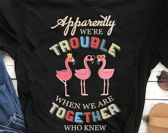 0d42b420d Flamingo Apparently We're Trouble When We Are Together Who Knew Shirt Funny  Humorous Quote Shirt