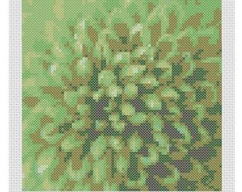 Green Chrysanthemum flower, full coverage PDF cross stitch pattern.