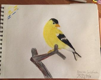 Yellow Birdie