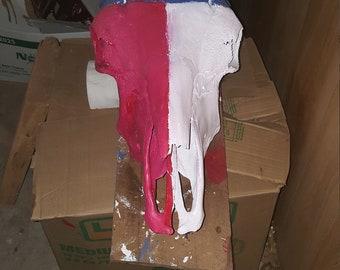 Texas Flag Cow skull