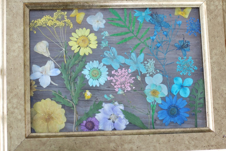 flower art preserved flowers leaf leaves Pressed dried flowers leaves art collages frame preserved dried flowers picture floral painting