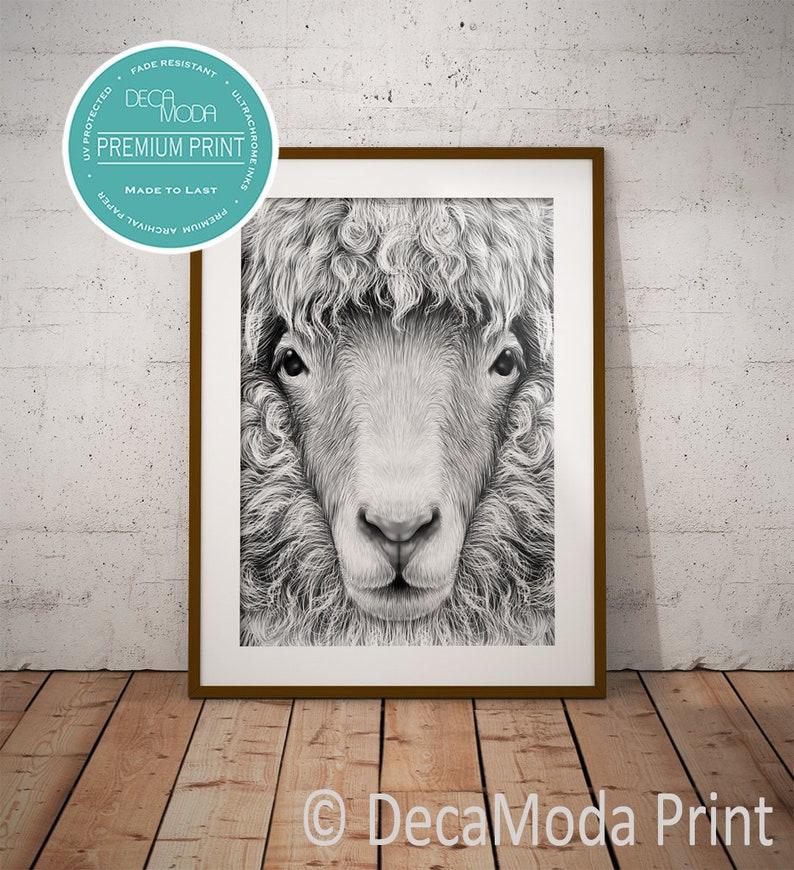 SHEEP PRINT, Sheep Art Print, Sheep Decor, Art Print, Sheep, Black and  White, Sheep Drawing, Sheep Wall Art, Sheep Home Decor, Sheep Prints
