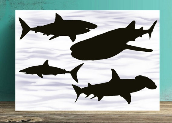 Shark Silhouette Print Sharks Silhouettes Great White Shark Etsy All of these skull shark silhouette background resources are for free download on pngtree. etsy