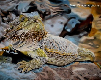 Poster bearded Dragon Pastel drawing