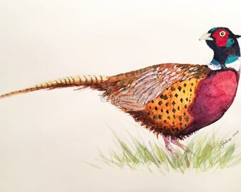 Pheasant 'On the look out' - print of original watercolour painting