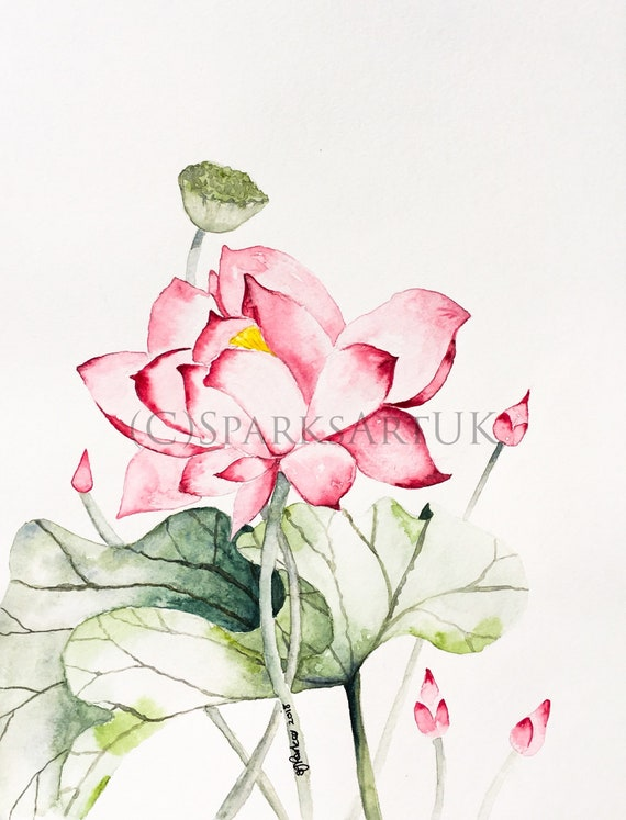 Chinese Lotus Flower And Leaf Print Of Original Watercolour Etsy