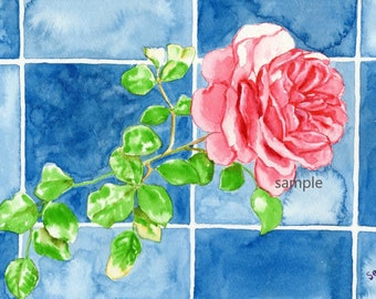 Red Rose and Blue Squares