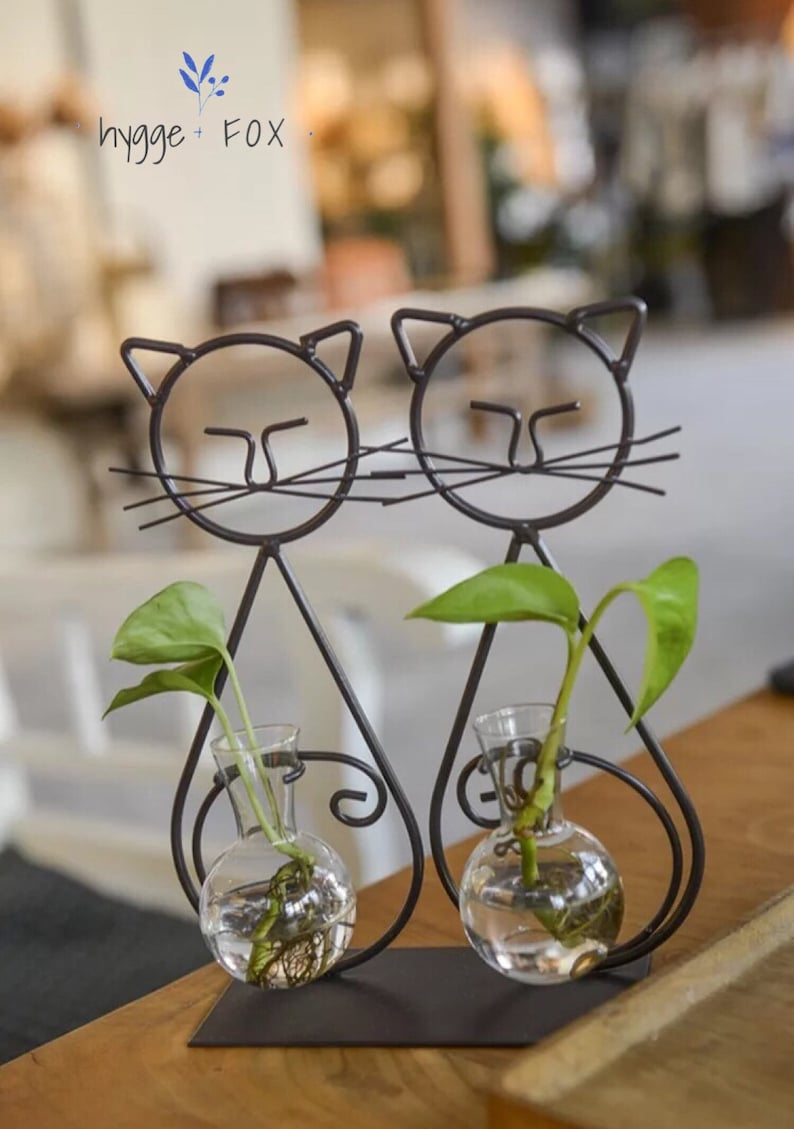 Twin Cats Glass Vase Water Plant Vase Glass Vasedried Etsy