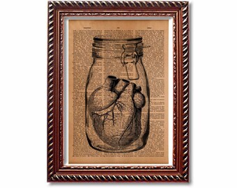 Jar heart print Anatomical illustration Medical art Antique Anatomy decor