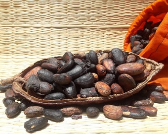 Fermented and fried cocoa beans