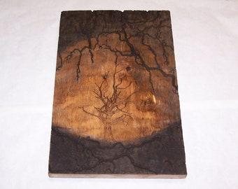 22 x 14 barnwood wall art, fractal, lichtenberg wood burning design
