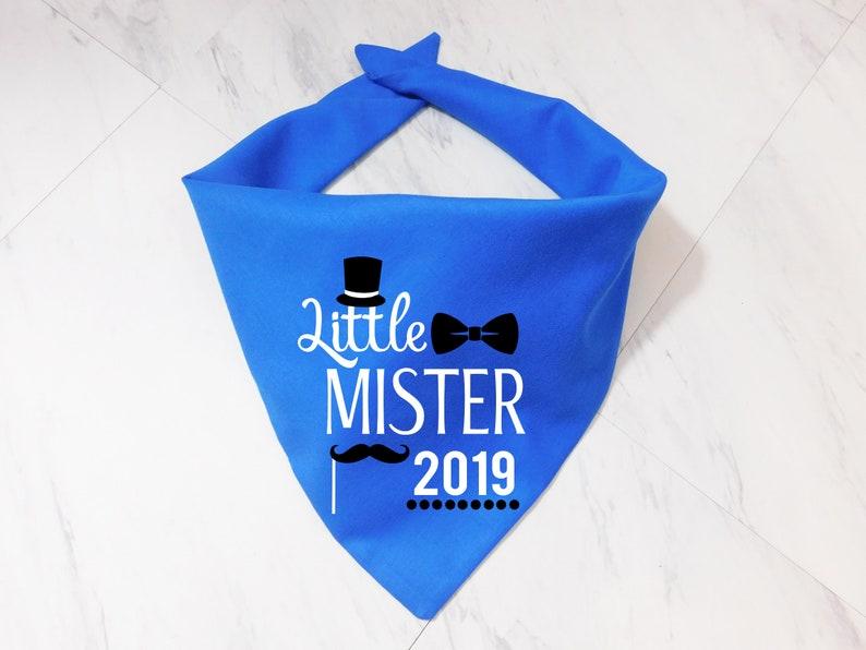 Little Mister 2019 Dog Bandana New Years Dog Bandana New | Etsy