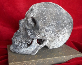 Human skull 1:1 bronse metal patinated