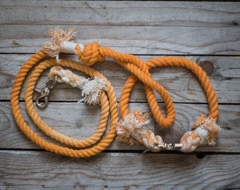 "SM leash and collar set ""LOLA"""