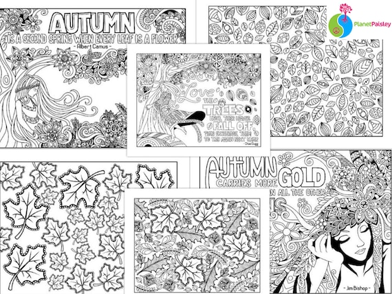 6 Autumn Coloring Pages Fall Color Instant Digital Download Printable PDF  Print Adult Coloring Mindfulness Anxiety Depression Stress Relief