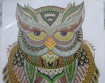 OOAK Original Colored Pencil Drawing of Owl