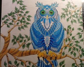 OOAK Original Colored Pencil Drawing of Owl on branch