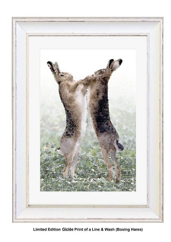 BOXING HARES, Framed Limited Edition Fine Art Giclée Print, from a ...
