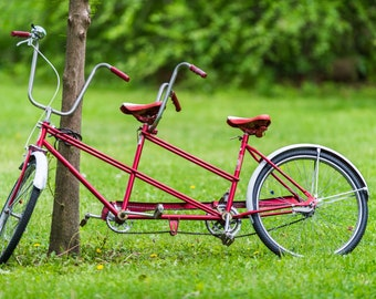 Red Tandem Bicycle in Park; Blank Photo Greeting Card