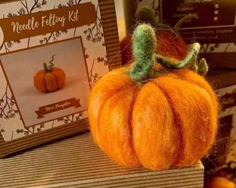 Mini Pumpkin - Needle Felting Kit