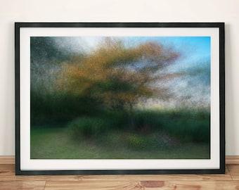 Dreamy Garden Tree Abstract Photography Original Art Poster Print
