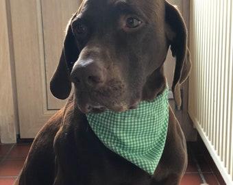#vichy dog bandana