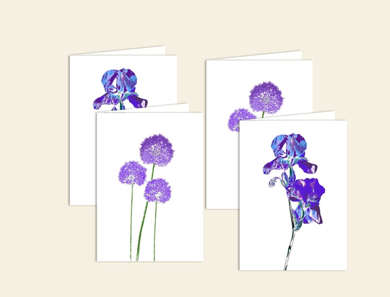 Pack of greetings cards  alium card and iris card image 0