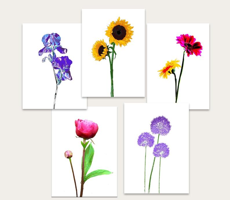 Pack of 5 flower cards: peony iris alium daisy sunflower image 0
