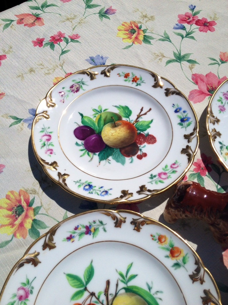 China Dessert Plates Gold Rimmed Vintage China Dishes Wall Decor Garden Party Dinnerware Fruit Decor Plates Hand Painted Kitchen Decor