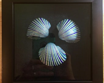 Hand Painted Shells in a Wooden Shadow Box: A Seaside Mandala