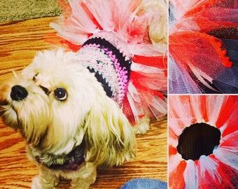 Puppy Tutu - Ruby Red Shorts