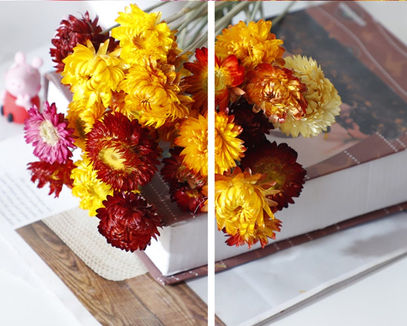 natural dried rustic woodland,for harvest 10 PCS Natural dried flower,Small Daisy sun dried flowers DIY Wedding Flowers,floral supply
