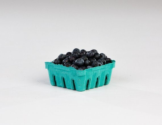 Berry Till Easter Basket 10 qty Wedding Favor Basket Quart Berry Baskets Farm Theme Party Favor Biodegradable Paper Pulp Basket