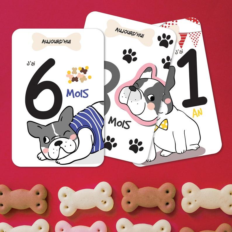 Immortalisez la première année de bébé avec ces cartes étapes originales sur le thème bouledogue - Créatrice ETSY : OmadeCreation