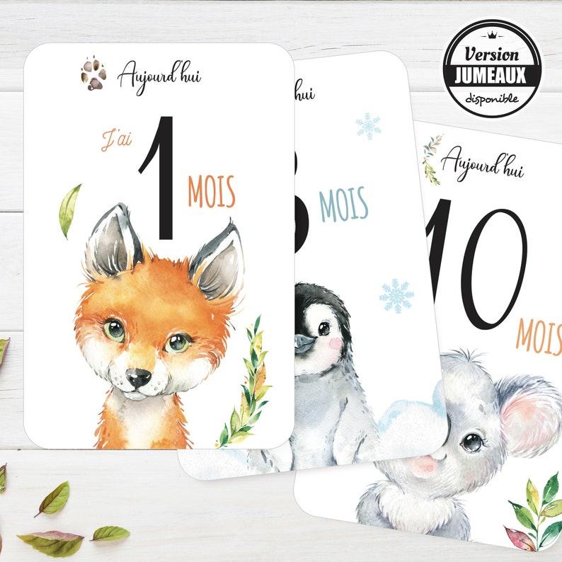 12 Cartes étapes Bébé thème animaux qualité haut de gamme - Créatrice ETSY : OmadeCreation