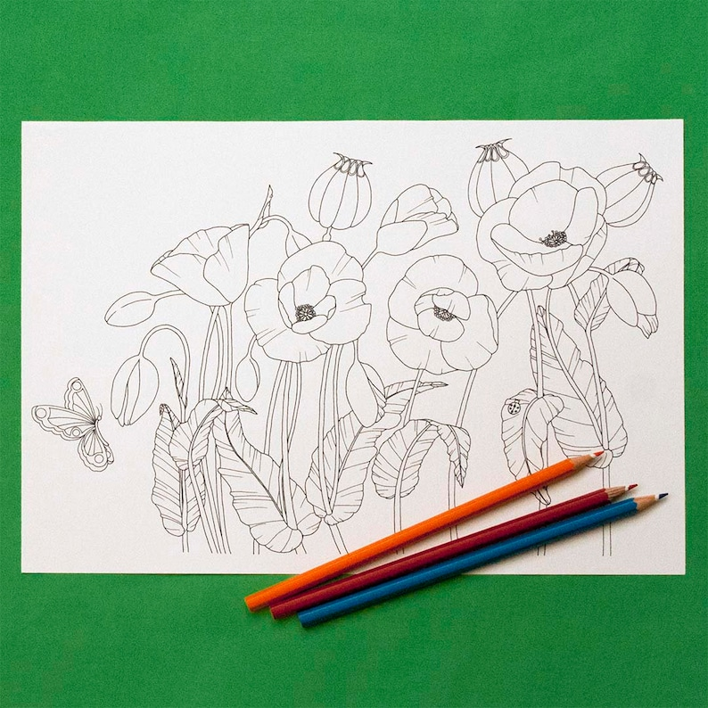 39 Colouring Sheet Remembrance