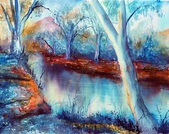 Torrens River Linear Park - summer