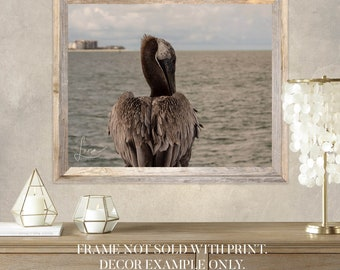 "Photography PRINT - Wall Art Decor - ""Pelican Feathers - Clearwater Beach"""