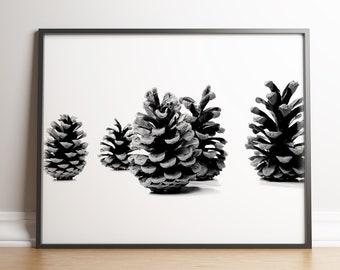 Pine Cone Nordic Style Art Nature Print Scandinavian Wall Art Botanical Black and White Affiche Scandinave Minimalist Pine Cone Art