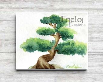 Bonsai Painting Etsy
