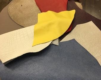 Various Leather scraps