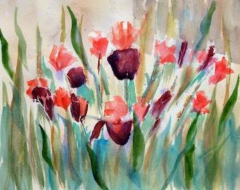 Iris original watercolor or reproduction