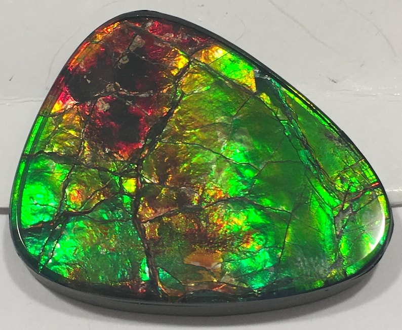 Free Form Clear Coated Cabochon Gemstone Ammolite Loose Guitar Pick Shape Ammolite Rainbow